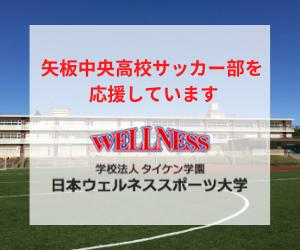 学校法人タイケン学園 日本ウェルネススポーツ大学